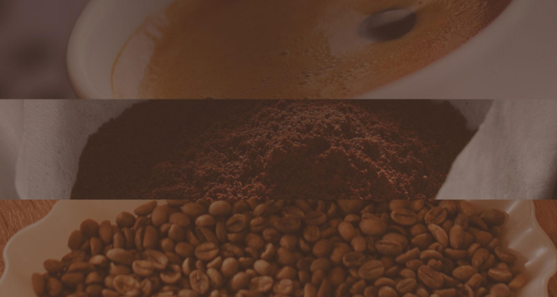 3 νέα σεμινάρια: SCAE Barista, Brewing και Sensory Foundation!
